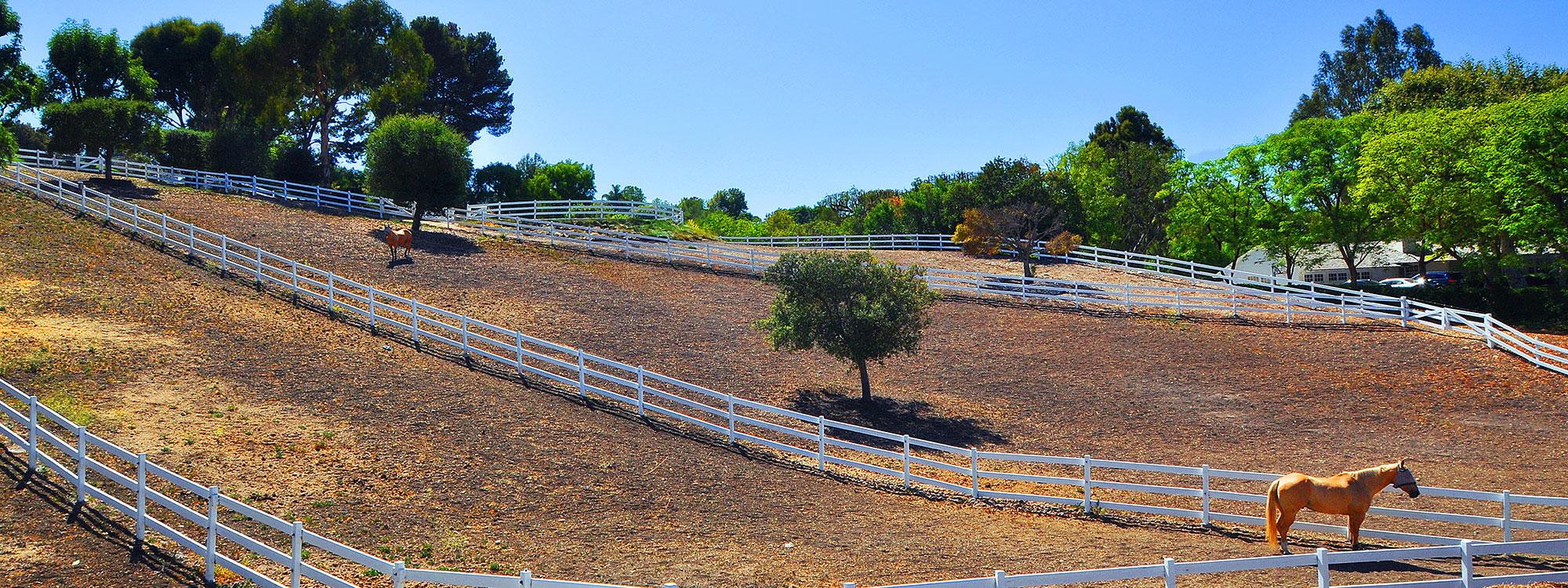 inman-horses
